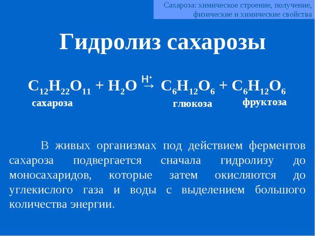 C12H22O11 + H2O → C6H12O6 + C6H12O6 В живых организмах под действием фермент...