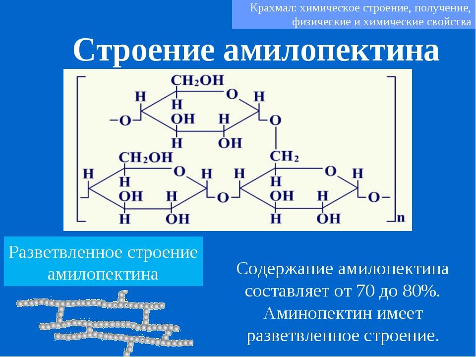 Строение амилопектина Крахмал: химическое строение, получение, физические и х...