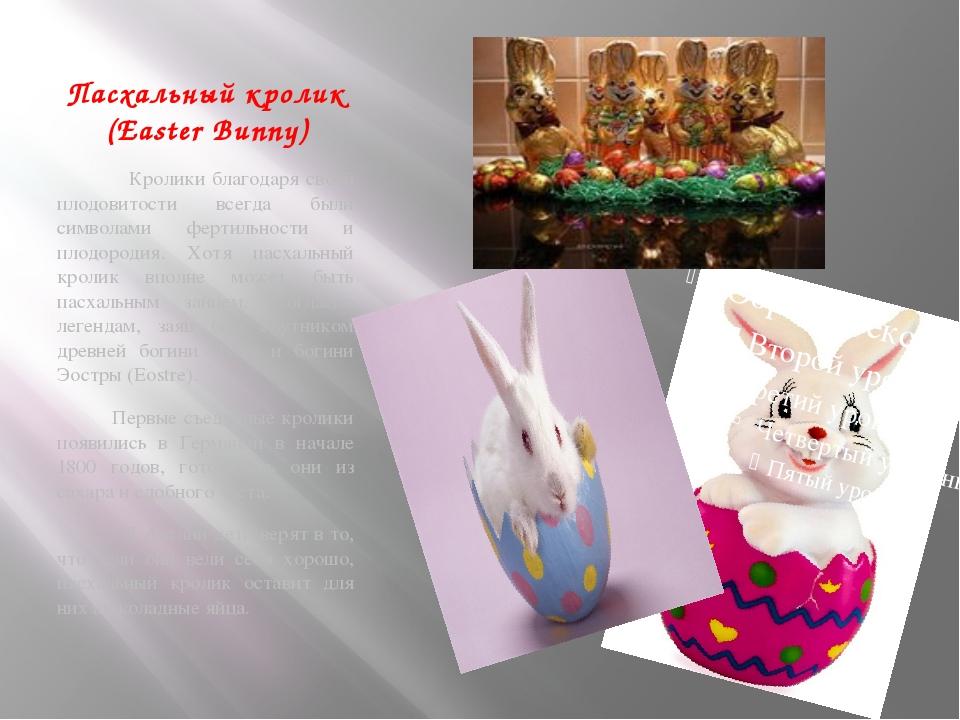 Пасхальный кролик (Easter Bunny) Кролики благодаря своей плодовитости всегда...