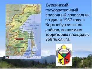 Буреинский государственный природный заповедник создан в 1987 году в Верхнеб