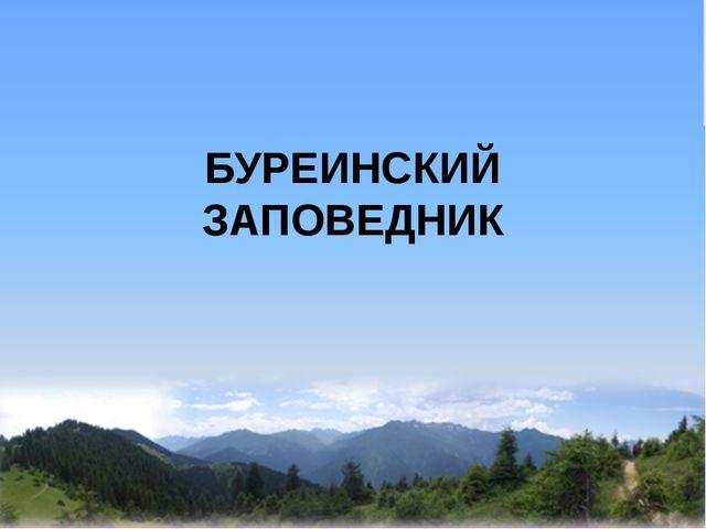 БУРЕИНСКИЙ ЗАПОВЕДНИК