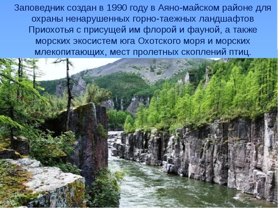 Заповедник создан в 1990 году в Аяно-майском районе для охраны ненарушенных...