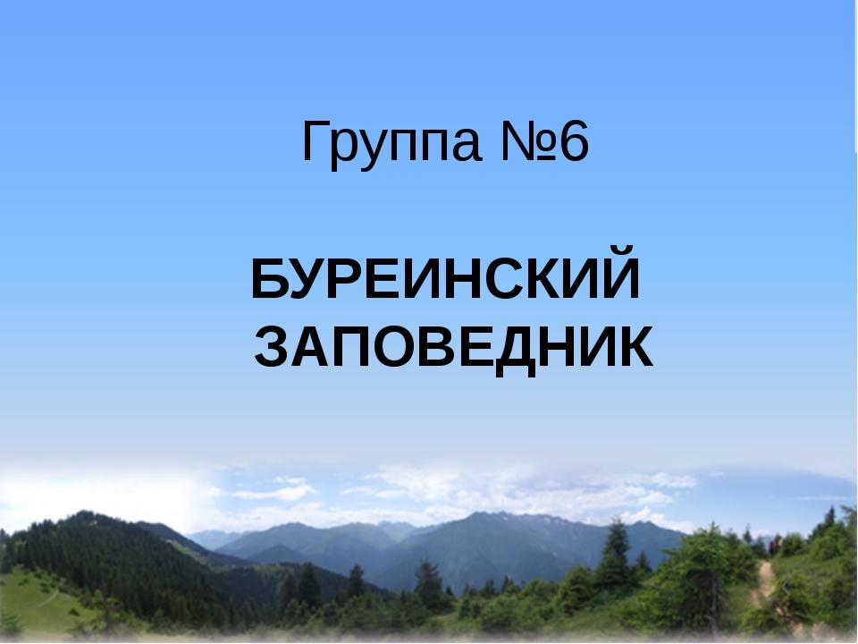 Группа №6 БУРЕИНСКИЙ ЗАПОВЕДНИК