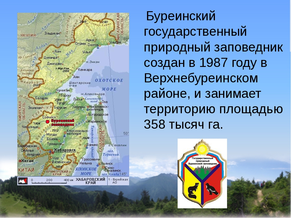Буреинский государственный природный заповедник создан в 1987 году в Верхнеб...
