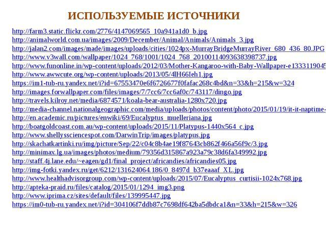 http://farm3.static.flickr.com/2776/4147069565_10a941a1d0_b.jpg http://animal...