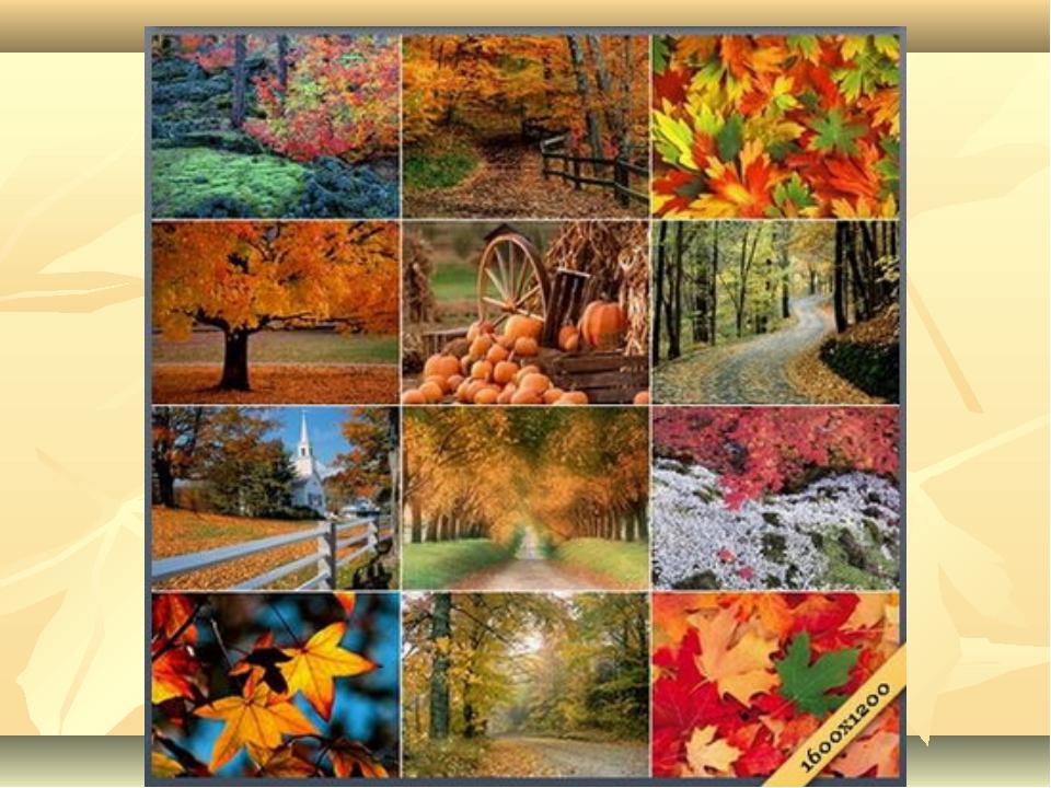коллаж на тему осень картинки этом