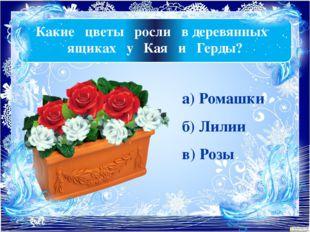 Какие цветы росли в деревянных ящиках у Кая и Герды? а) Ромашки б) Лилии в) Р
