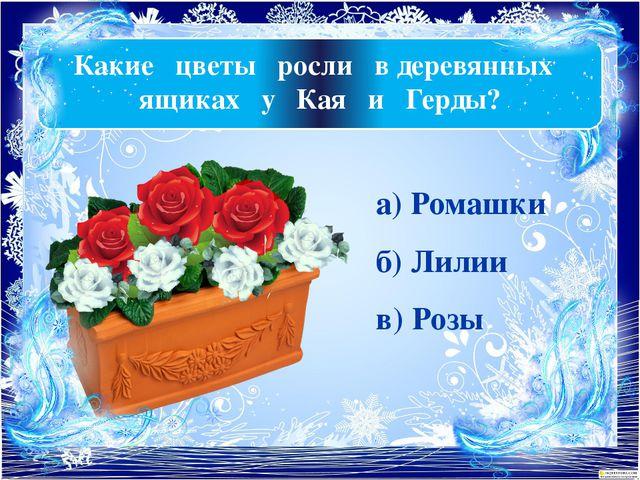 Какие цветы росли в деревянных ящиках у Кая и Герды? а) Ромашки б) Лилии в) Р...