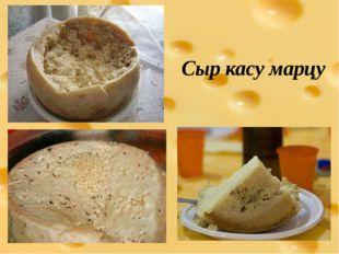 Сыр касу марцу