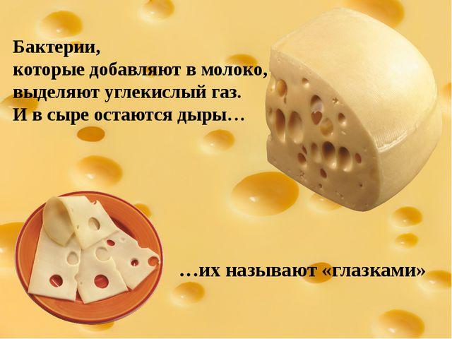 Бактерии, которые добавляют в молоко, выделяют углекислый газ. И в сыре остаю...