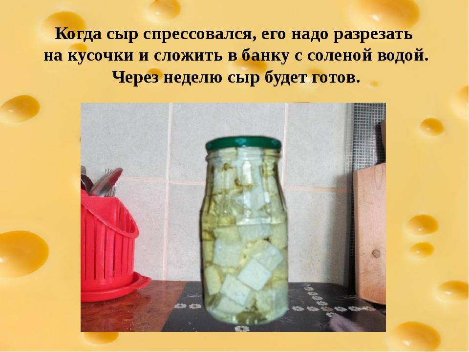 Когда сыр спрессовался, его надо разрезать на кусочки и сложить в банку с сол...