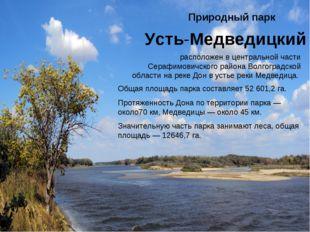 Природный парк Усть-Медведицкий расположен в центральной части Серафимовичско