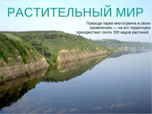 Природа парка многогранна в своих проявлениях— на его территории произрастаю
