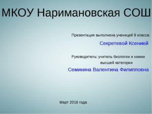 МКОУ Наримановская СОШ Презентация выполнена ученицей 9 класса: Секретевой Кс