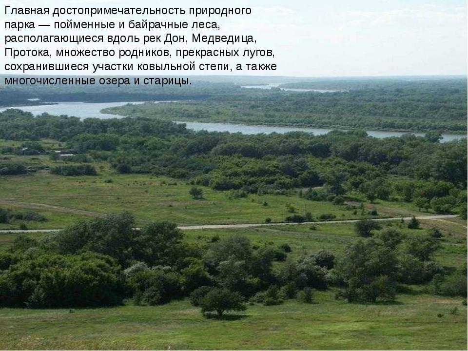 Главная достопримечательность природного парка— пойменные и байрачные леса,...