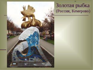 Золотая рыбка (Россия, Кемерово) *