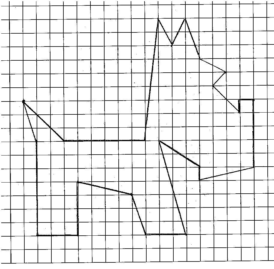 собака 001.jpg