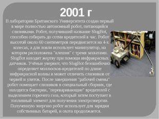 2001 г В лаборатории Британского Университета создан первый в мире полностью