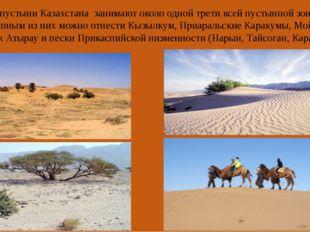 Песчаные пустыни Казахстана занимают около одной трети всей пустынной зоны.