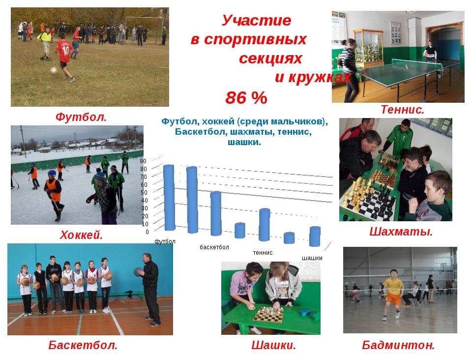 Участие в спортивных секциях и кружках 86 % Хоккей. Футбол. Баскетбол. Тенни...