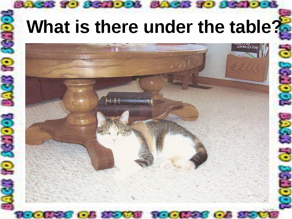 What is there under the table?
