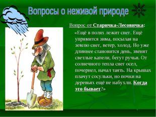 Вопрос от Старичка-Лесовичка: «Ещё в полях лежит снег. Ещё упрямится зима, по