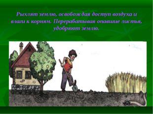 Рыхлят землю, освобождая доступ воздуха и влаги к корням. Перерабатывая опавш