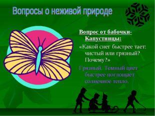 Вопрос от бабочки-Капустницы: «Какой снег быстрее тает: чистый или грязный?
