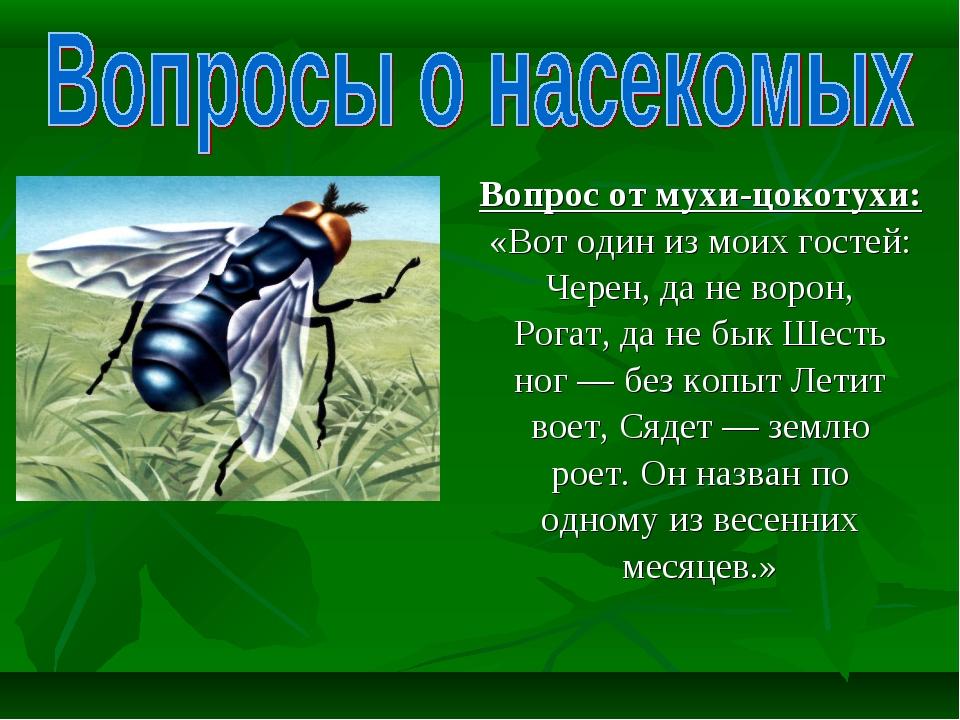 Вопрос от мухи-цокотухи: «Вот один из моих гостей: Черен, да не ворон, Рогат,...