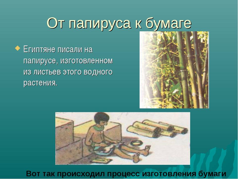 От папируса к бумаге Египтяне писали на папирусе, изготовленном из листьев эт...