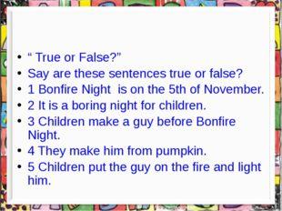 """ True or False?"" Say are these sentences true or false? 1 Bonfire Night is"