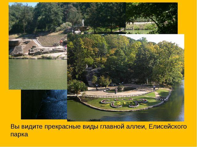 Вы видите прекрасные виды главной аллеи, Елисейского парка