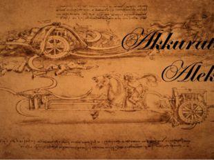 Historians stipulate that it was Leonardo da Vinci's fascination with flight