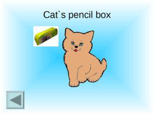 Cat`s pencil box