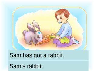Sam has got a rabbit. Sam's rabbit.