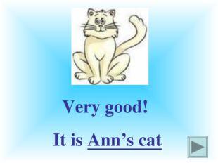 Very good! It is Ann's cat