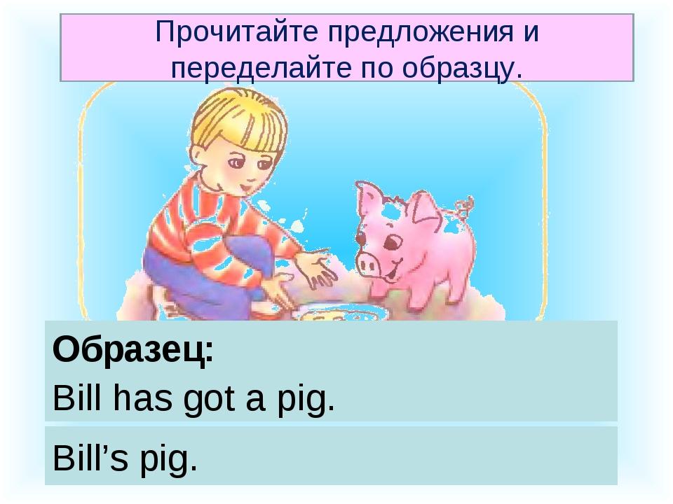 Образец: Bill has got a pig. Bill's pig. Прочитайте предложения и переделайте...