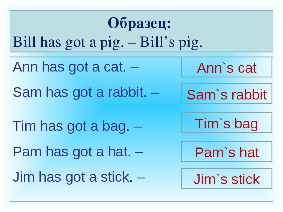 Образец: Bill has got a pig. – Bill's pig. Ann has got a cat. – Sam has got a...