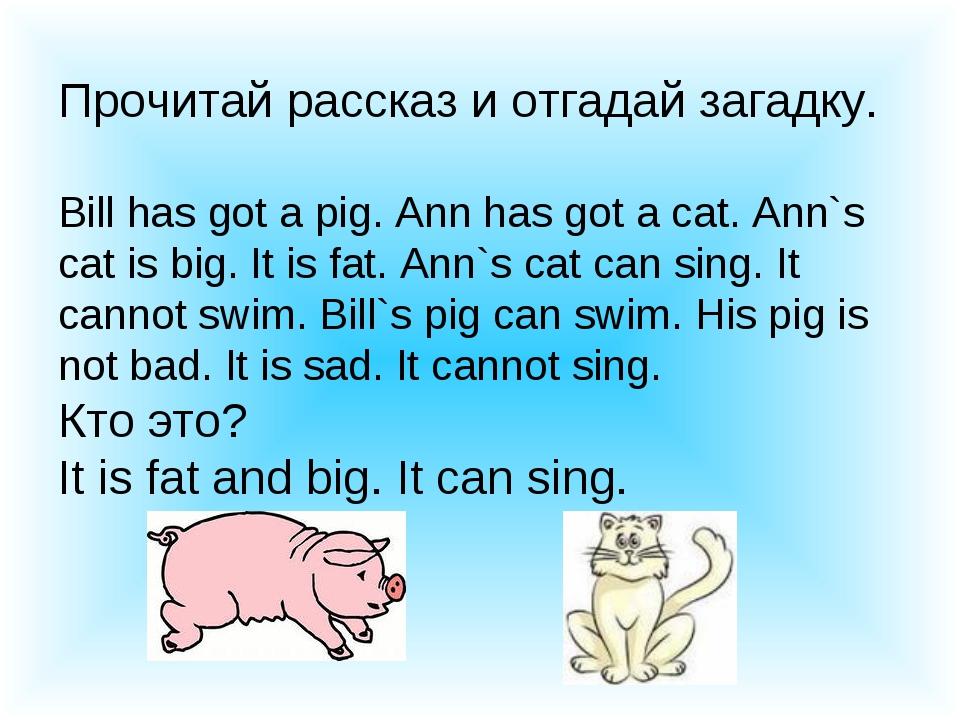 Прочитай рассказ и отгадай загадку. Bill has got a pig. Ann has got a cat. An...