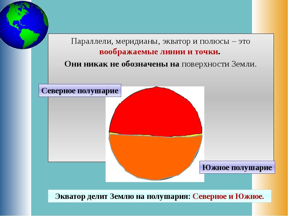 Параллели, меридианы, экватор и полюсы – это воображаемые линии и точки. Они...