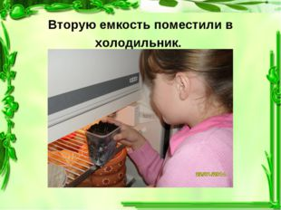 Вторую емкость поместили в холодильник.