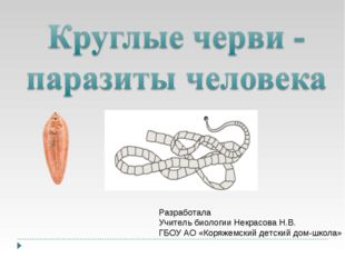 Разработала Учитель биологии Некрасова Н.В. ГБОУ АО «Коряжемский детский дом-
