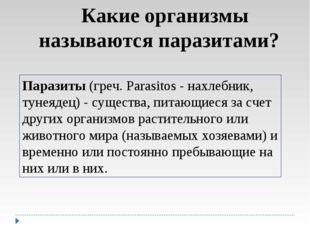 Какие организмы называются паразитами? Паразиты (греч. Parasitos - нахлебник,