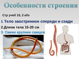Стр учеб 15, 2 абз 1. Тело заостренное спереди и сзади 2.Длина тела 15-20 см