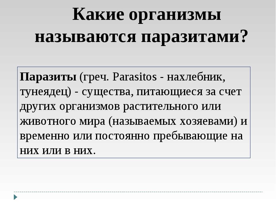 Какие организмы называются паразитами? Паразиты (греч. Parasitos - нахлебник,...