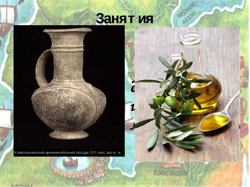Занятия Выращивание винограда и изготовление вина; Выращивание оливковых дере...