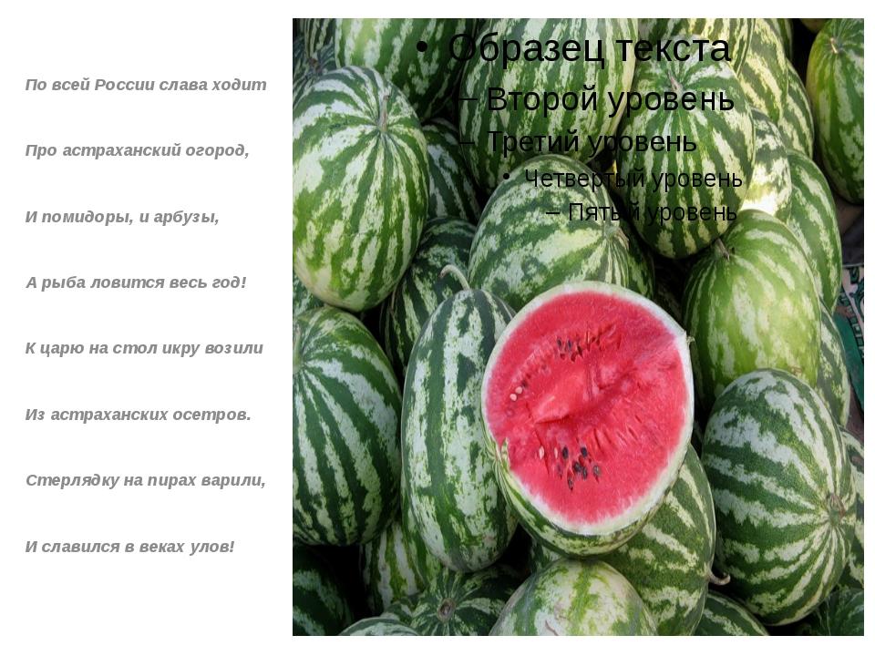 По всей России слава ходит Про астраханский огород, И помидоры, и арбузы, А...