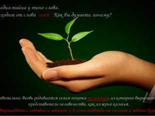 """Есть ещё одна тайна у этого слова. Оно происходит от слова """"семя"""". Как вы дум"""