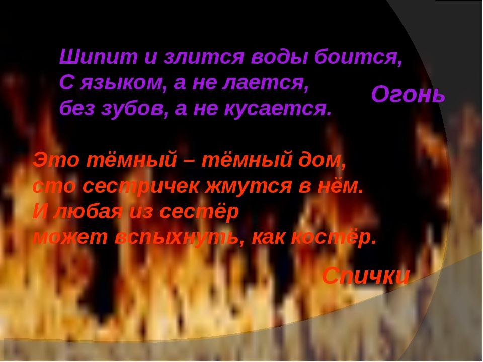 Шипит и злится воды боится, С языком, а не лается, без зубов, а не кусается....