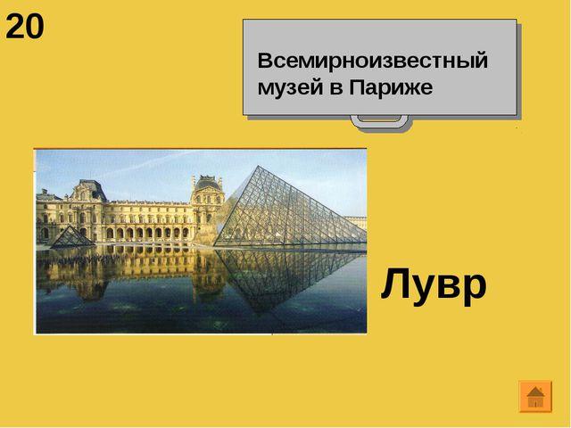 20 Всемирноизвестный музей в Париже Лувр